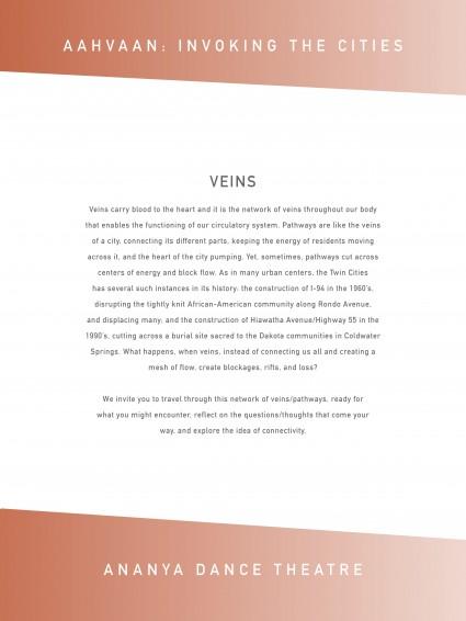 Veins Ananya_Aahvaan_Signage18x24-page-2